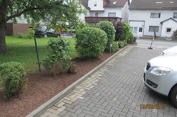 Obstbaum -Hecken und Sträucherschnitt